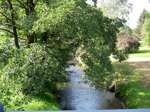 Die Saale bei Weißdorf
