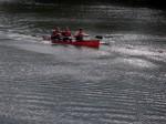 Kanuten auf der Saale