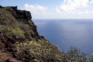 Links und rechts dieser Lavaspitze sind die Ausblicke grandios und lassen die Nordostküste besser verstehen.