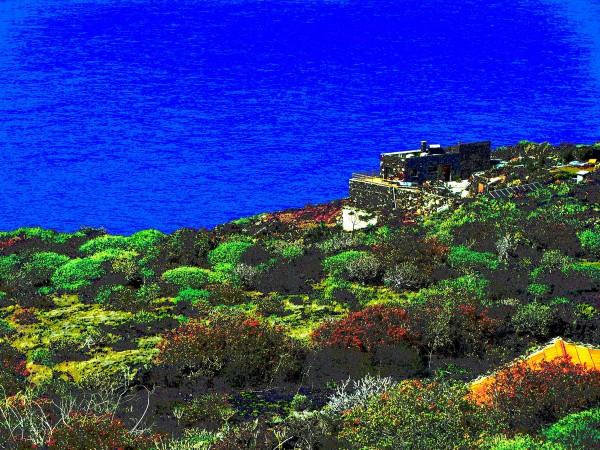 El sol de Canarias encima de LM